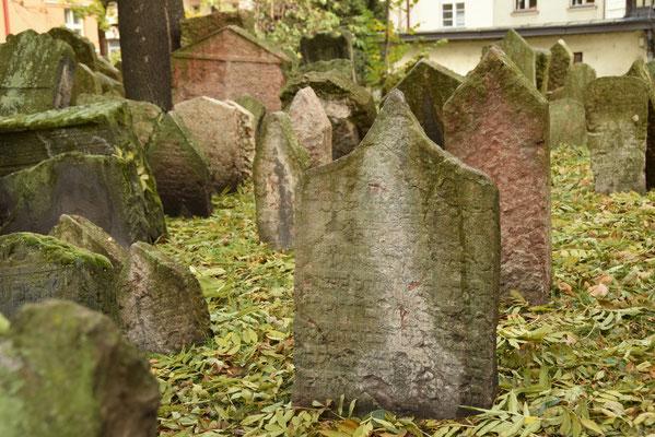 8.Joodse kerkhof