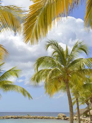 36.Cabana beach, Curacao