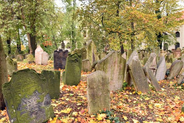 3.Joodse kerkhof