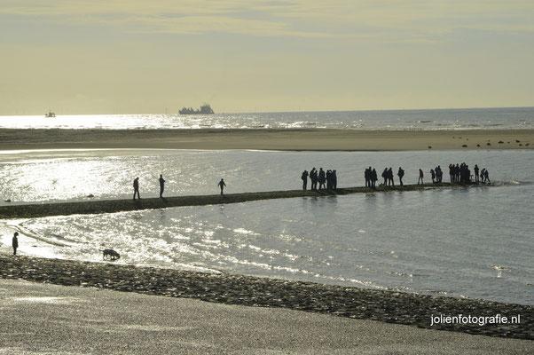 4. Noordzeekust, Petten