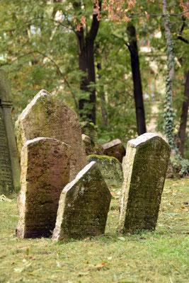 5.Joodse kerkhof