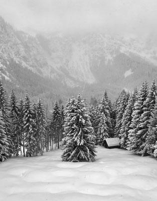 Ehrwald, Wettersteingebirge