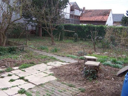 Blick in den Salmen- Garten