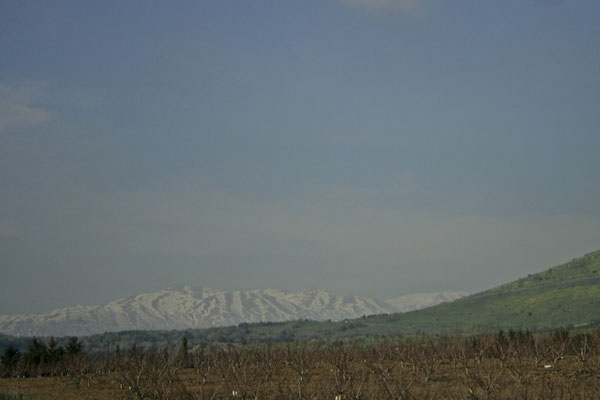GOLAN HEIGHTS, ISRAEL - 2011