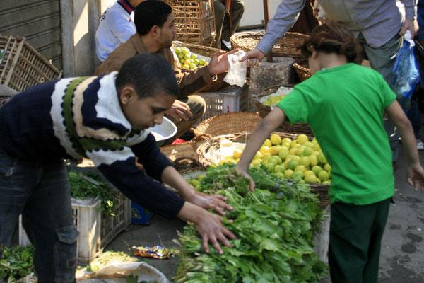 CAIRO, EGYPT - 2011