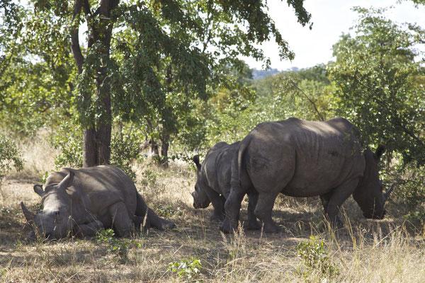 LIVINGSTONE, ZAMBIA - 2018