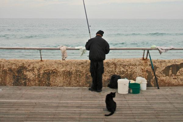 TEL AVIV, ISRAEL - 2012