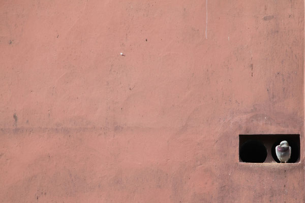 MARRAKECH, MOROCCO - 2015
