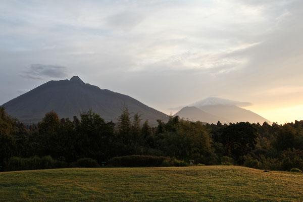 MOUNT BISOKE, RWANDA - 2016