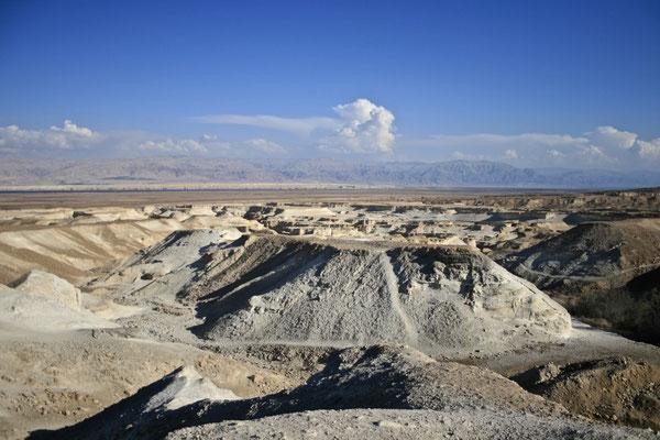 NEGEV DESERT, ISRAEL - 2011