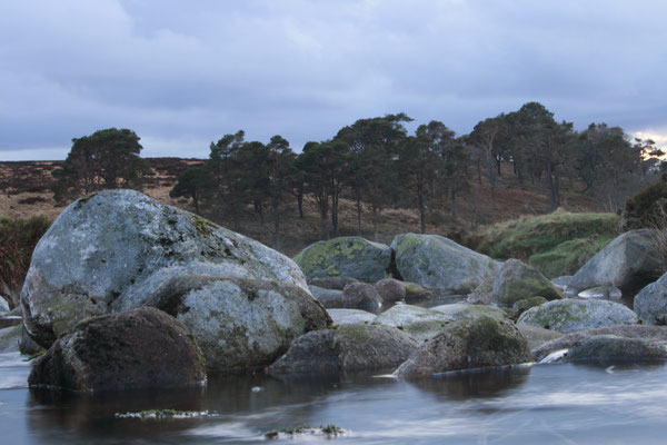 WICKLOW MOUNTAINS, IRELAND - 2011
