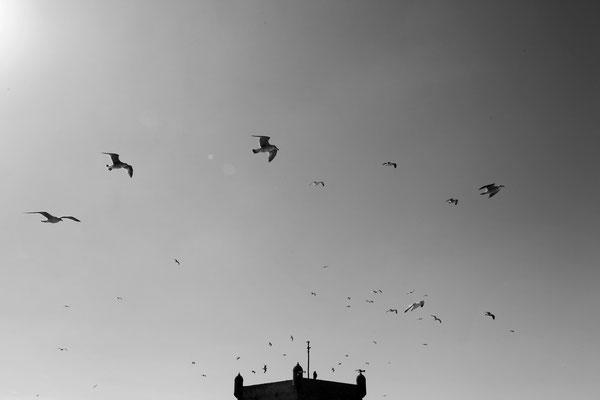 ESSAOUIRA, MOROCCO - 2014