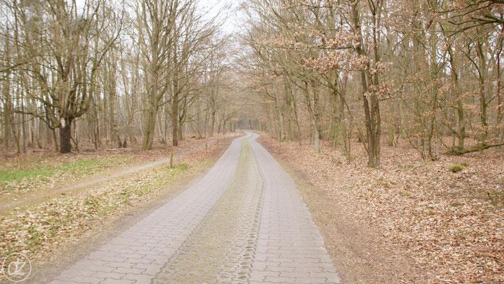 Die Anfahrt nach Plattenburg | Foto: Detlef Zabel