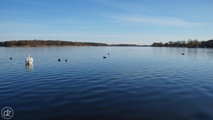 der Ruppiner See