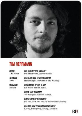 Tim Hermann - Häuptling Bromden Kuckucksnest Hamburg 2016 Theater Orange