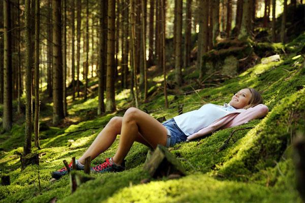 Urlaub im Waldviertel