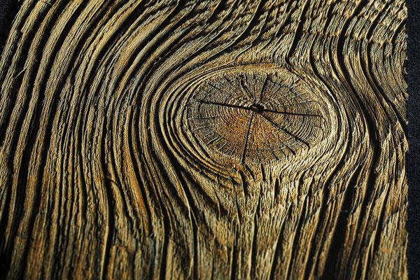 Gedruckte Holztextur