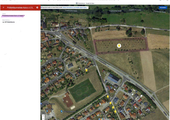 Standort: Ortseingang von Euerdorf kommend (Oberhalb von HOBOS Hive I) / ca. 60 Apfelbäume
