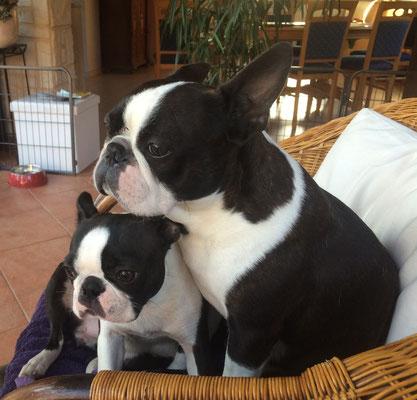 Bonni und Mo