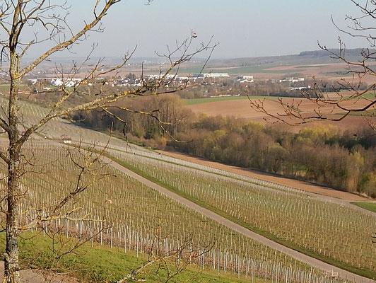 Blick vom Reisenberg auf Langwiesen