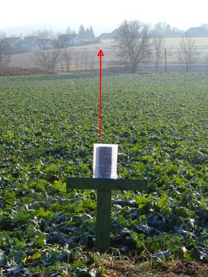 Grünes Kreuz in Sichtweite einer gerodeten Streuobstwiese und todgeweihten Feldern für das Wohngebiet Gehrn West Pfaffenhofen