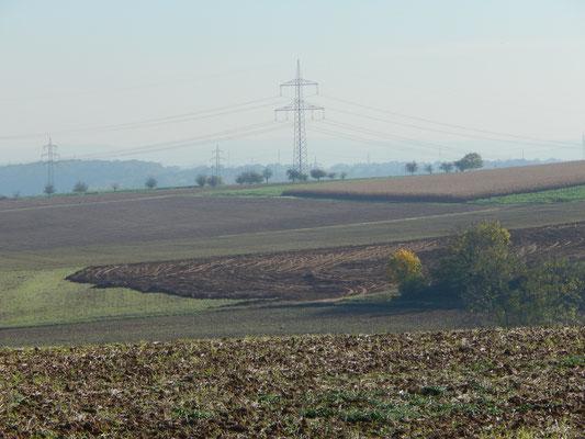 26.10.2019, das Feld oberhalb Langwiesen III (Taxis)