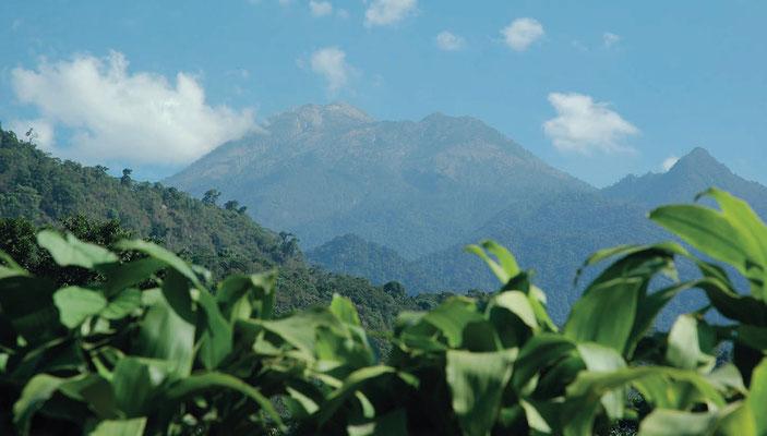 Kleinbauern in Guatemala