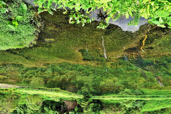 Lagoa das Patas. Flores. Azores