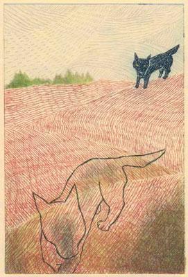 「バスカヴィル家の犬」 コナン・ドイル著