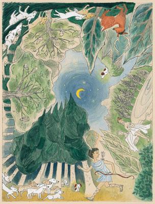 『冬の星座のギリシャ神話』こいぬ座 (朝日小学生新聞より 井辻朱美・文)