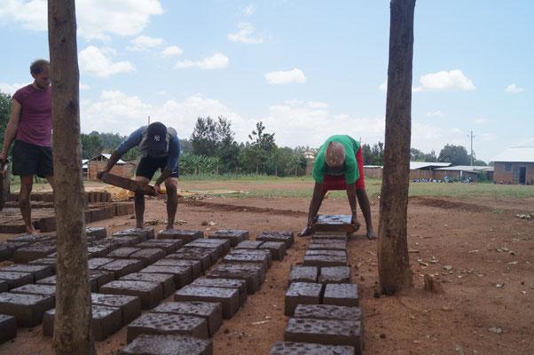 In den letzten Schritten werden die frisch hergestellten Ziegel auf den Schulhof gelegt um zu Trocknen. Dort müssen sie täglich gewendet und für die Nächte abgedeckt werden.