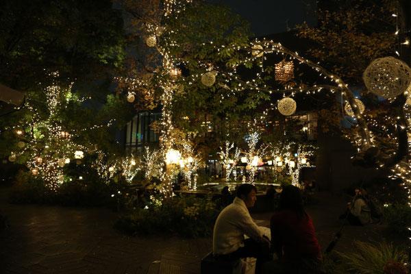 東急プラザ 表参道・原宿 おもはらの森 クリスマスイルミネーション施工工事