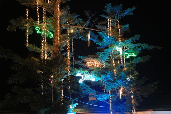 富士サファリパーク、ナイトイルミネーション