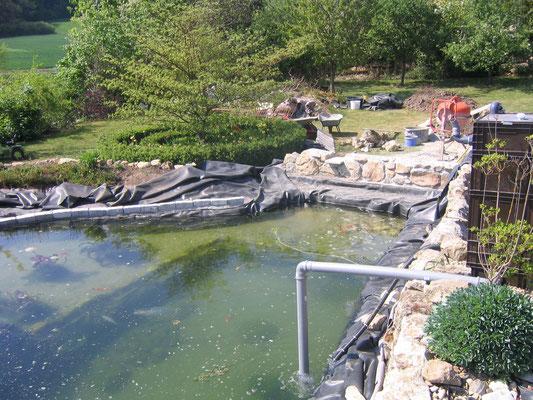 der Teich wurde dann 9,2 m x 8,5 m und fasste ca. 50m³