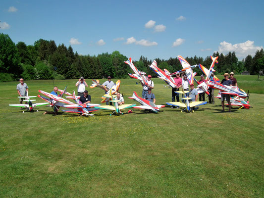 Die Piloten der Klasse F3A (P-19/Expertenklasse)