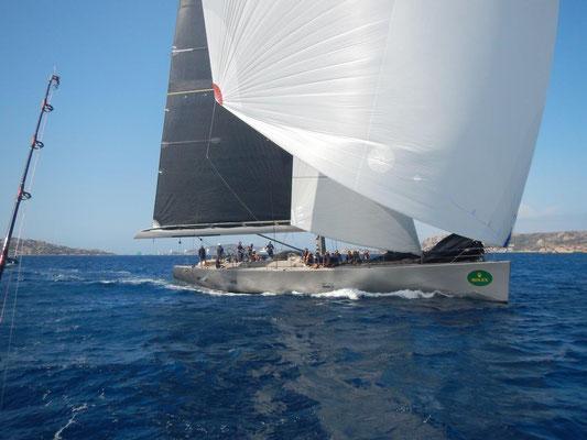 Mitsegeln, Sardinien und die Regatta beobachten