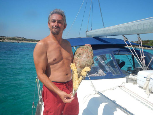 Skipper Jochen mit ner kleinen Muschel