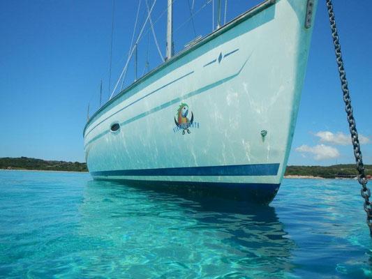 Die Segeyacht JOJO - eine Bavaria 46 Cruiser - auf scheiß türkis mit Logo von Viagempirata
