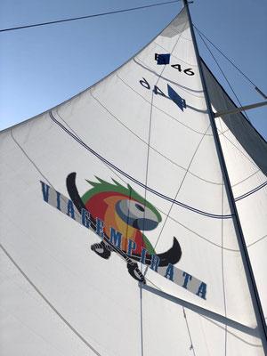Die Segel der Jojo mit dem Logo von Viagempirata.