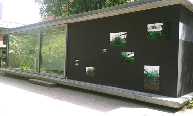 Bricollage - Ausstellung Pavillon am Milchhof Berlin, Außenansicht, Lisi Frassl