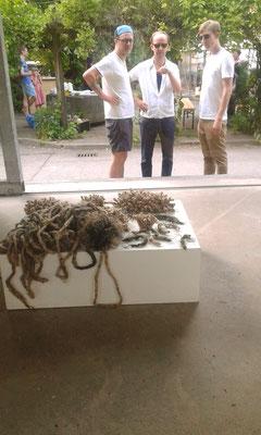 Bricolage - Ausstellung Pavillon am Milchhof Berlin, Eva Hradil