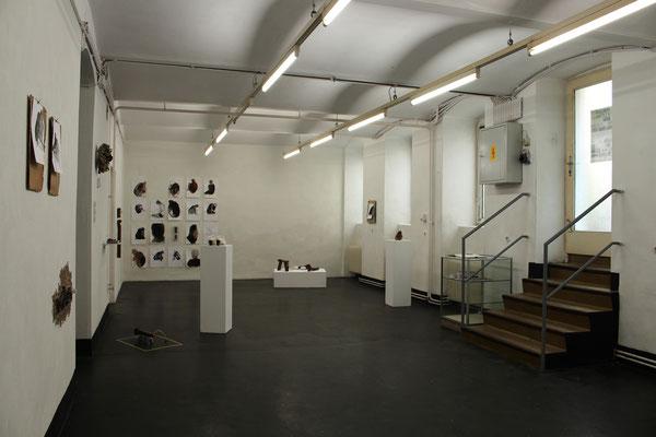 SKIN/SKIM Eva Hradil - sculptures, Jenny Lundgren - ink on paper, basement, Vienna
