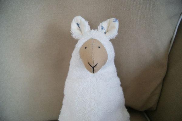 kangourou ou mouton ?