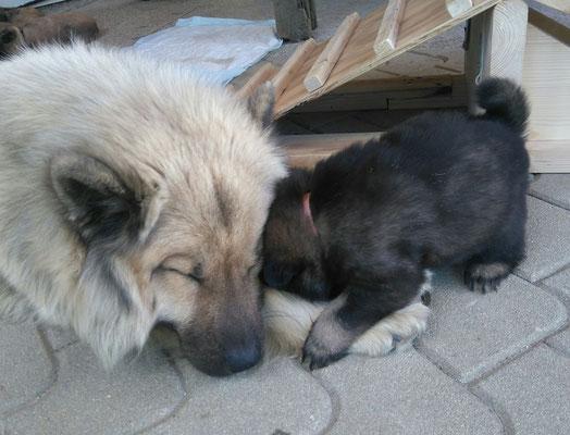 BONNY mit Mama Ira