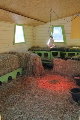 Hühnerhaus Lila