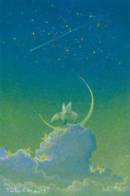 Tapir's dream