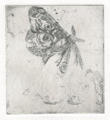 Vroni Schwegler, mit Pfauenauge,Strichätzung, 9,0x8,0 cm