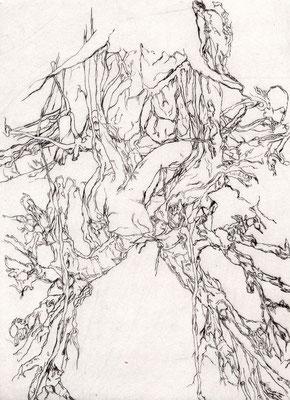 BRONCHIALBAUM, Mirjam, Kaltnadelradierung, UV-Print auf Acrylglas, 17,0 x 22,0 cm