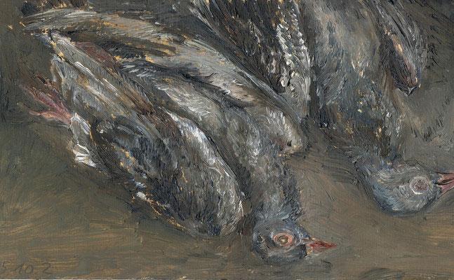 Vroni Schwegler, Tauben, 18,0x30,0 cm
