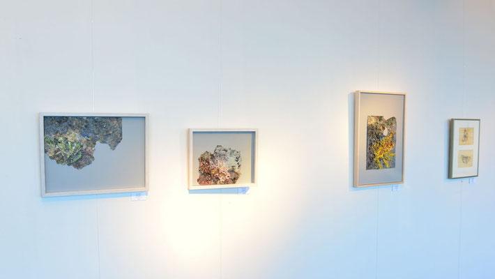 Hängung in der Galerie IV (Foto: Christian Hanc)